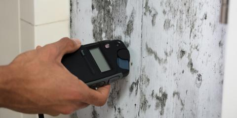 Guide-to-Mold-Inspection